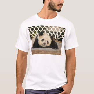 Giant Panda Bear & Baby Panda Shirt