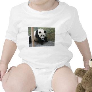 Giant Panda Bear & Baby Panda Shirt