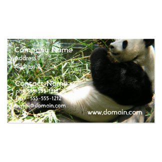 Giant Panda Bear Business Card Templates