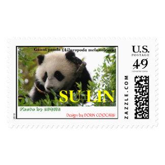 Giant panda bear cute cub SU LIN Postage Stamp
