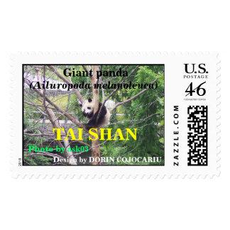 Giant panda bear cute cub Tai Shan Postage