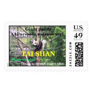 Giant panda bear cute cub Tai Shan Stamps