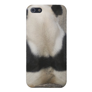 Giant Panda Bear i Case For iPhone 5