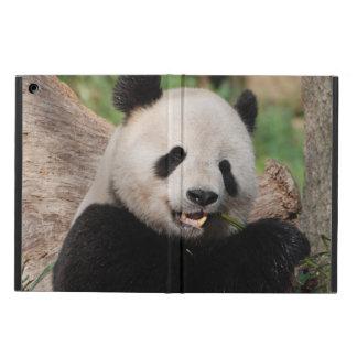 Giant Panda Bear iPad Air Cover