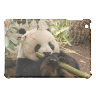 Giant Panda Bear  iPad Mini Case