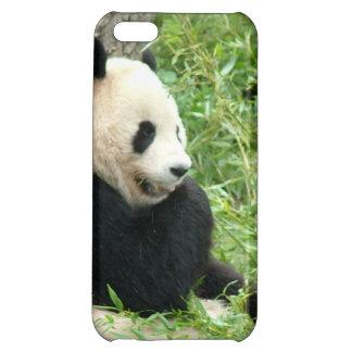 Giant Panda Bear iPhone 5C Cover