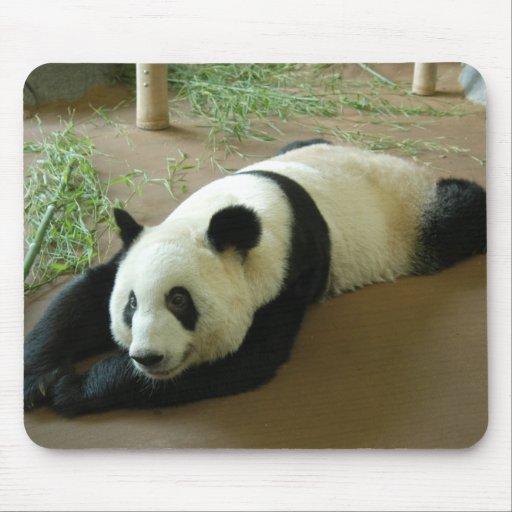 Giant Panda Bear Mousepad