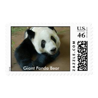 Giant Panda Bear Stamp