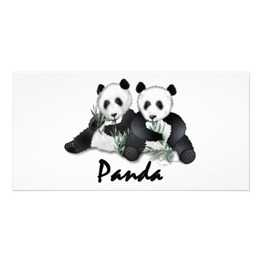 Giant Panda Bears Photo Cards