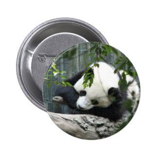 Giant Panda Button