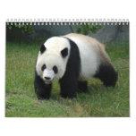 Giant Panda Calendar