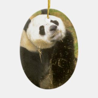 Giant Panda Ceramic Ornament