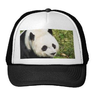 Giant Panda Close Up Portrait Trucker Hat