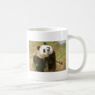 Giant Panda Coffee Mug