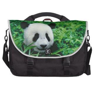 Giant Panda cub eats bamboo in the bush, Commuter Bag