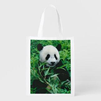 Giant Panda cub eats bamboo in the bush, Grocery Bags