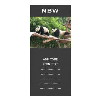 Giant panda in a wild animal zoo photography. rack card