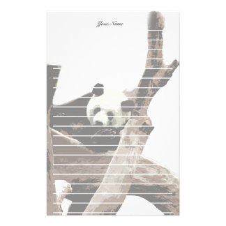 Giant panda in a wild animal zoo photography. stationery