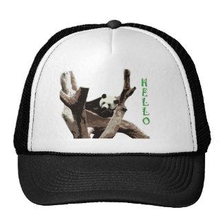Giant panda in a wild animal zoo photography. trucker hat