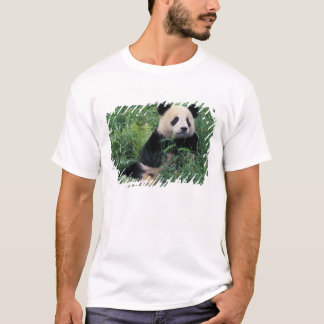 Giant panda in the grass, Wolong Valley, Sichuan T-Shirt