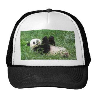 Giant Panda Lounging Eating Bamboo Trucker Hat