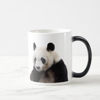 Giant panda magic mug
