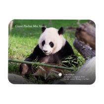 Giant Panda Mei Xiang Magnet