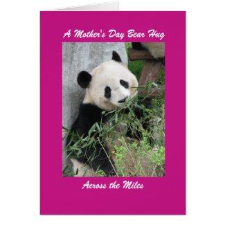 Giant Panda Mother's Day Bear Hug Across the Miles
