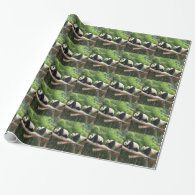 Giant panda on the tree branch. Animal photography Wrapping Paper