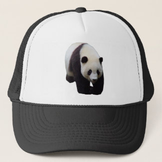 Giant Panda Photo Baseball Cap