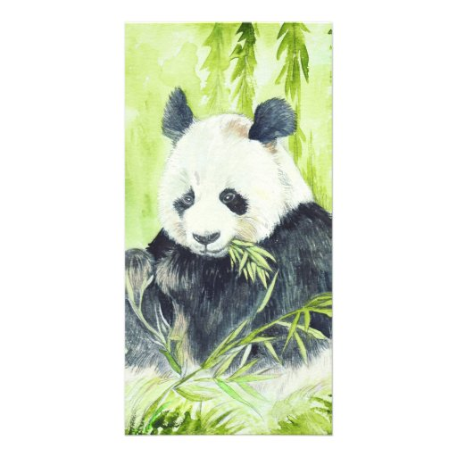 Giant Panda photocards Picture Card