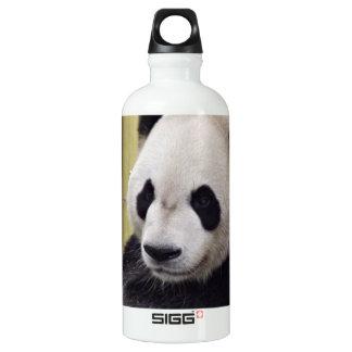 Giant Panda Portrait Water Bottle