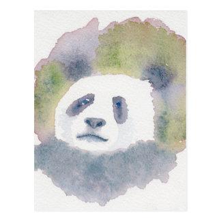 Giant Panda Postcard