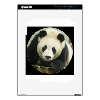 """Giant panda"" iPad 3 Skins"