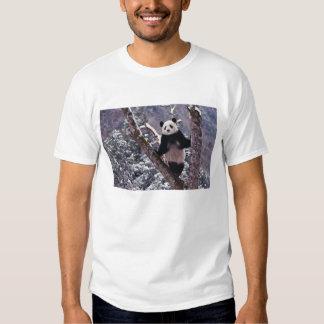 Giant Panda standing on tree, Wolong, Sichuan, T-shirts