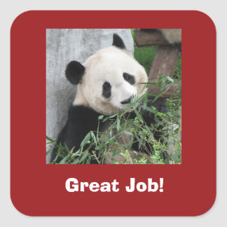Giant Panda Stickers, Teacher, Great Job! Square Sticker