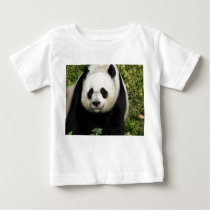 Giant Panda Straight On Face Infant Baby Shirt