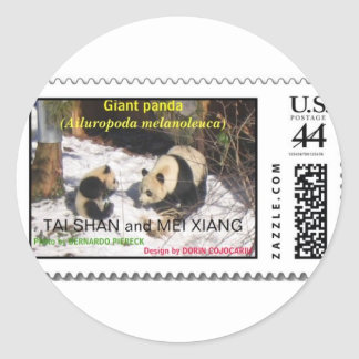 Giant panda Tai Shan and Mei Xiang Washington DC Classic Round Sticker