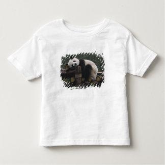 Giant pandas at the Giant Panda Protection & 3 Toddler T-shirt
