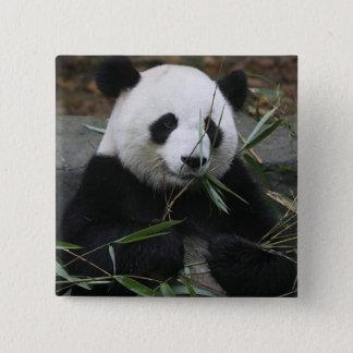 Giant pandas at the Giant Panda Protection & Button