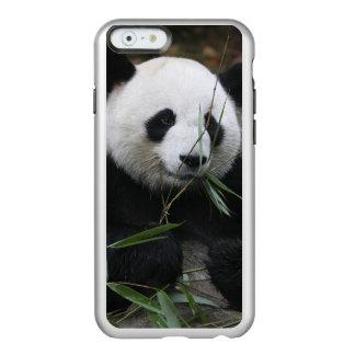 Giant pandas at the Giant Panda Protection Incipio Feather Shine iPhone 6 Case