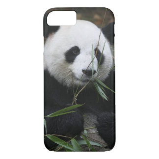 Giant pandas at the Giant Panda Protection iPhone 8/7 Case