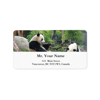 Giant pandas label