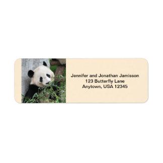 Giant Pandas Return Address Labels, Tan Label