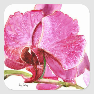 Giant Pink Orchid Square Sticker