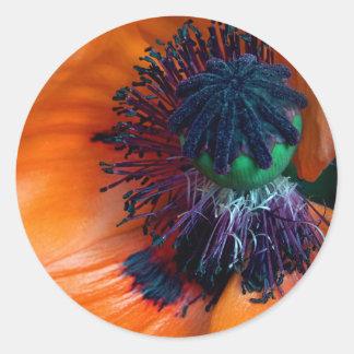 Giant Poppy Classic Round Sticker