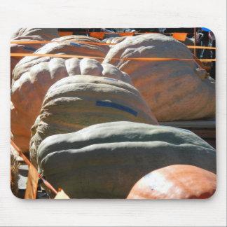 Giant Pumpkins Mouse Pad