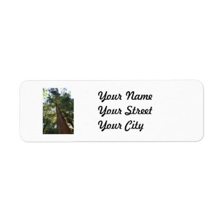 Giant Redwood Sequoia Treetop Label