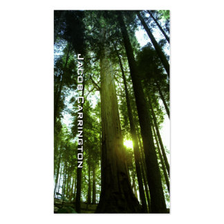 Giant Redwoods Double-Sided Standard Business Cards (Pack Of 100)