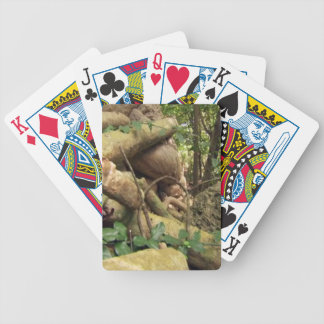 Giant root trees from Zanzibar island Bicycle Playing Cards